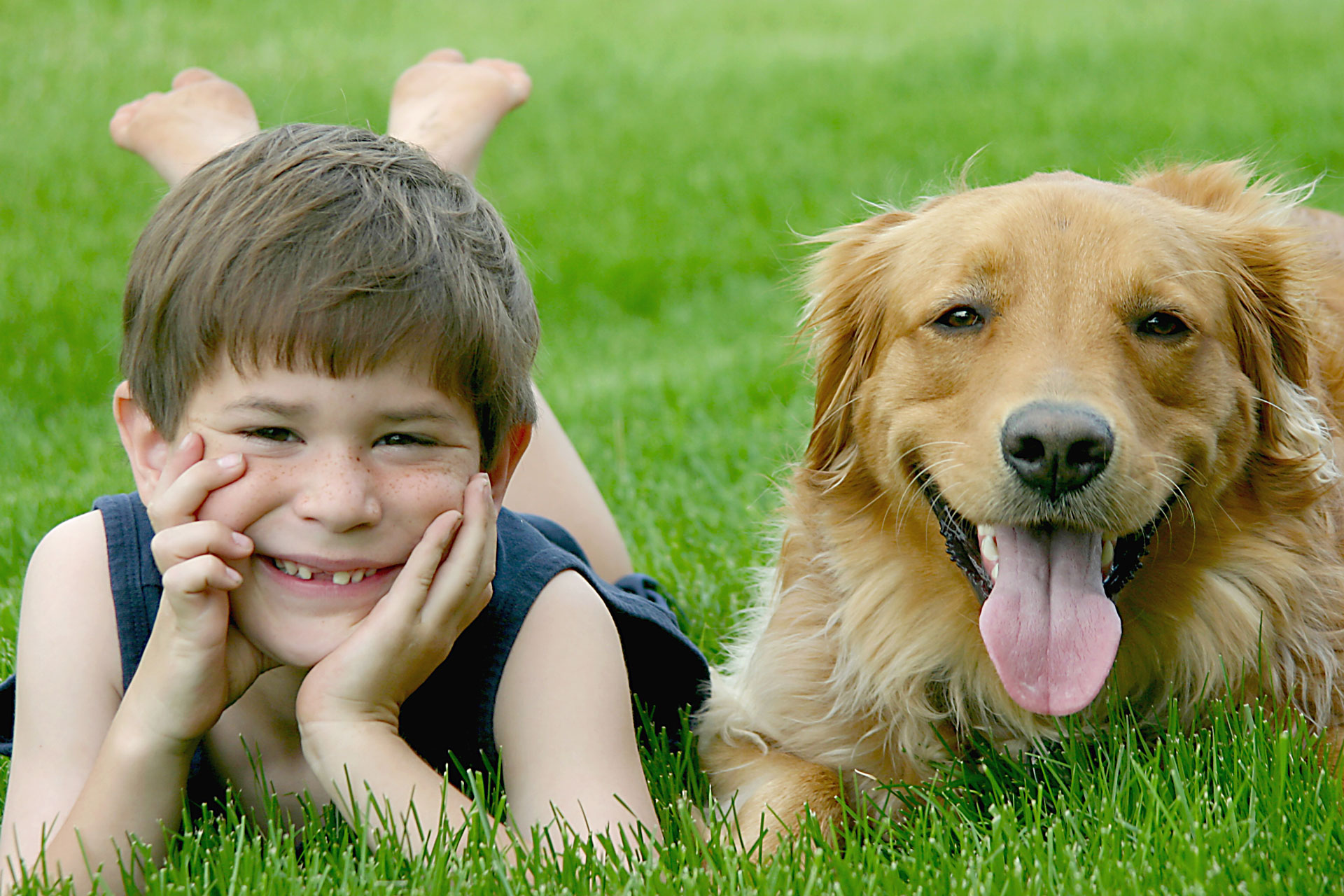 Indoor Air Quality Kids and Dogs by Clean Slate